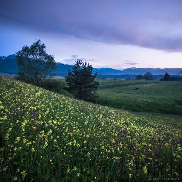 Spring evening near Rila Mountain